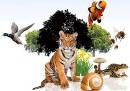 29 декабря – Международный день биологического разнообразия  (День флоры и фауны)
